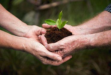 10 Raisons de construire avec de la terre